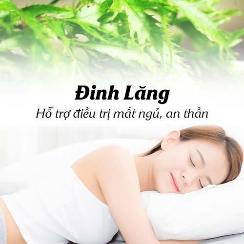 cong-dung-cay-dinh-lang-3