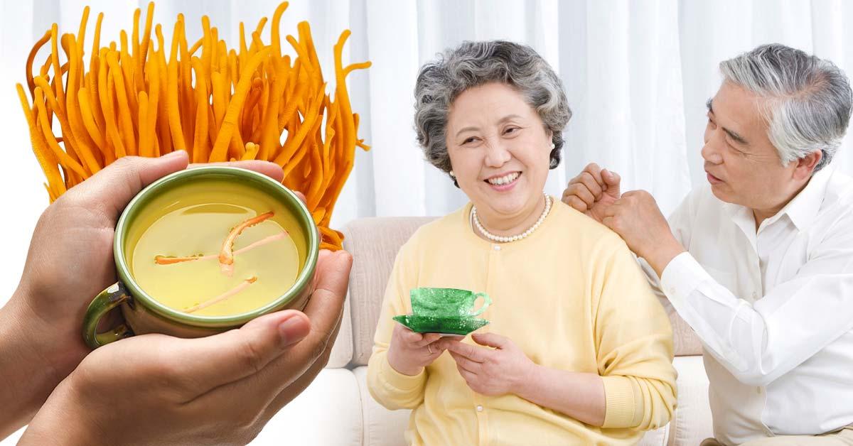 Chăm sóc sức khỏe tại nhà với Đông Trùng Hạ Thảo